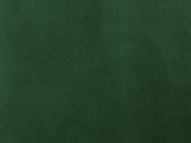 Velours vert sapin 1604